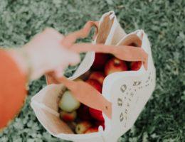 welke online supermarkt is het goedkoopst